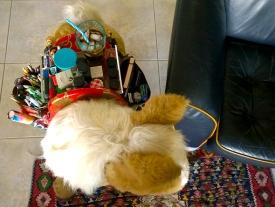 saddle 2