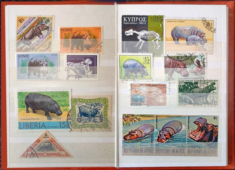 stampsp2